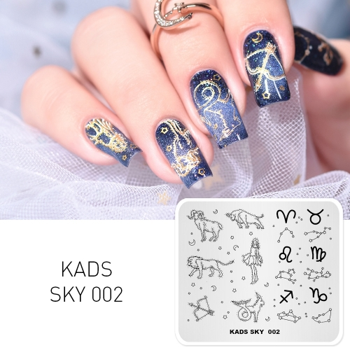 SKY 002 Nail Stamping Plate Sky Constellation