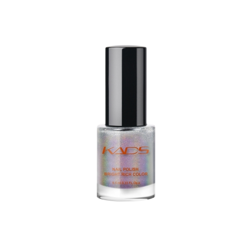 Nail Stamp Polish 9.5ml Laser Silver