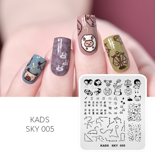 SKY 005 Nail Stamping Plate Constellation